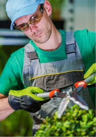 gardener performing landscaping on hedges at townsville handyman